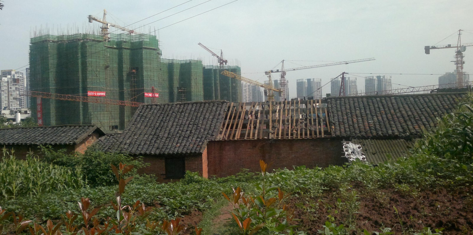 Construction fever. Hundreds of millions of Chinese await to leave the countryside for living in one of these beehies. Zijang