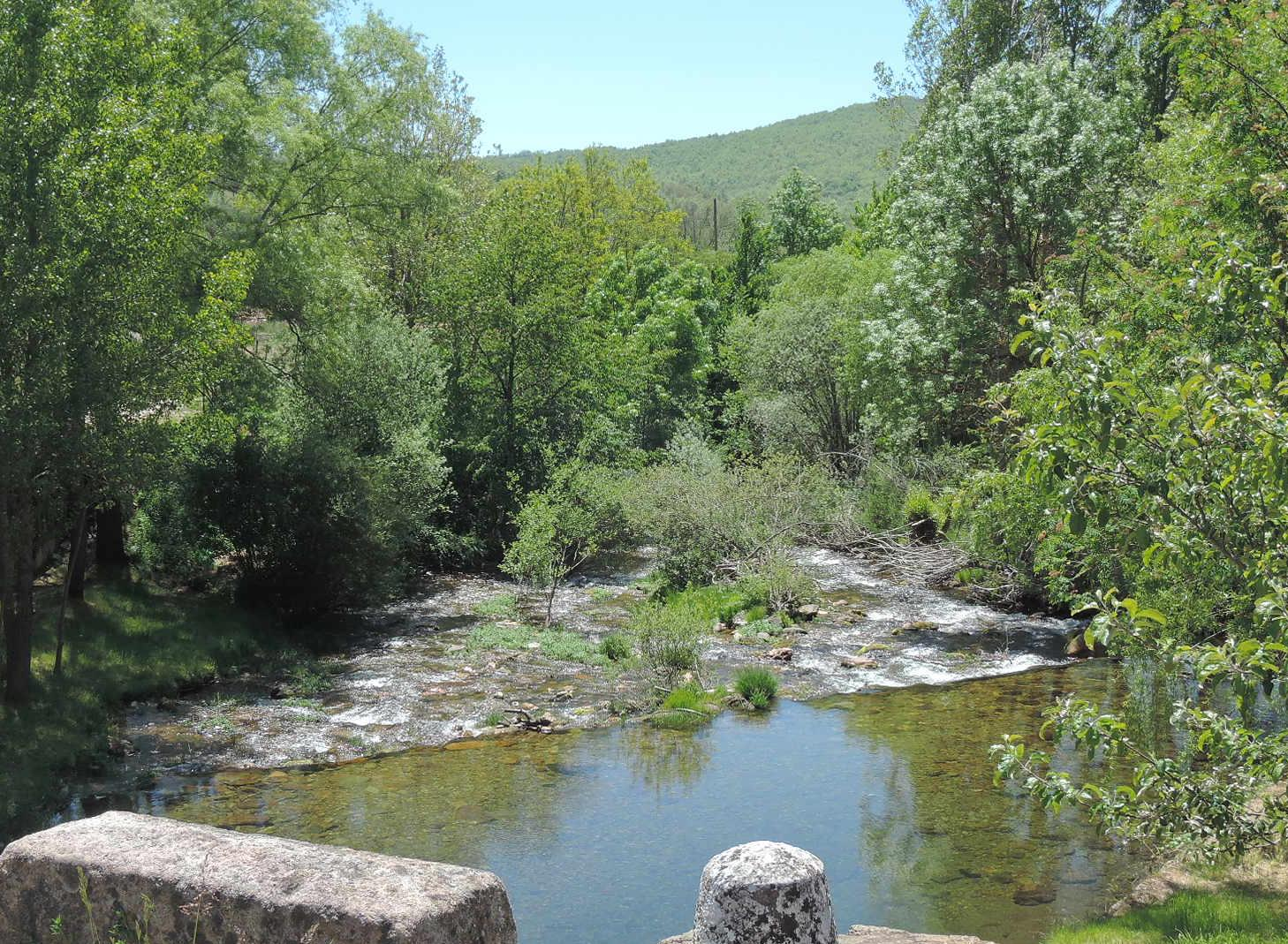 Río Pedroso, a su paso por Barbadillo de Herreros.