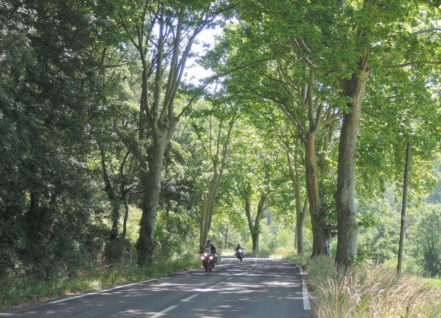 Ejemplo de típica carretera secundaria francesa.