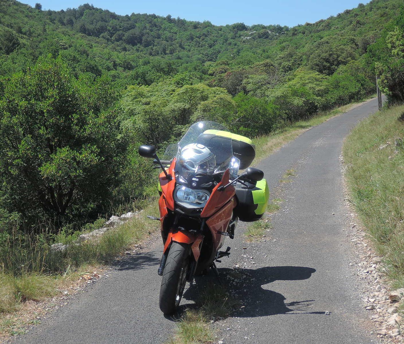 Rosaura en el camino asfaltado, en medio del espeso monte.