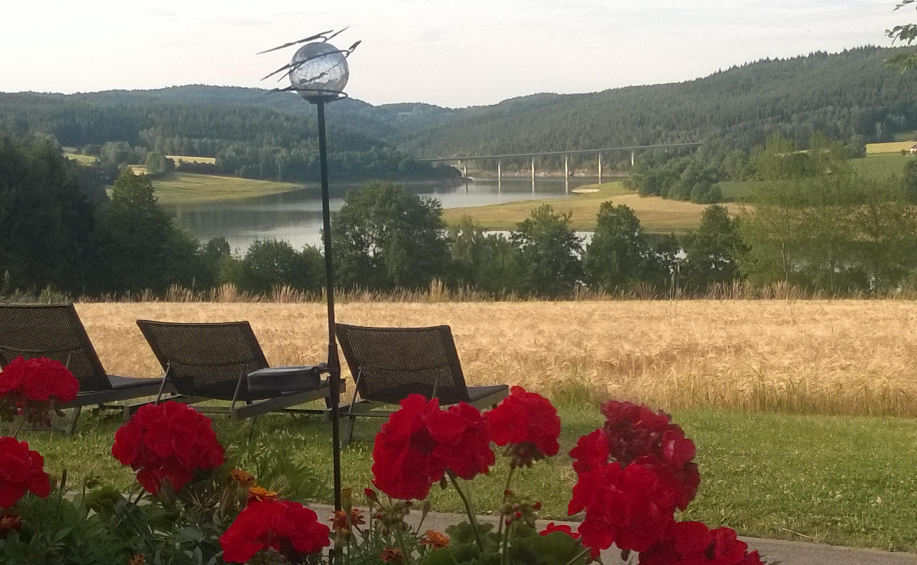 Vista desde la terraza-comedor del hotel Panorama am See