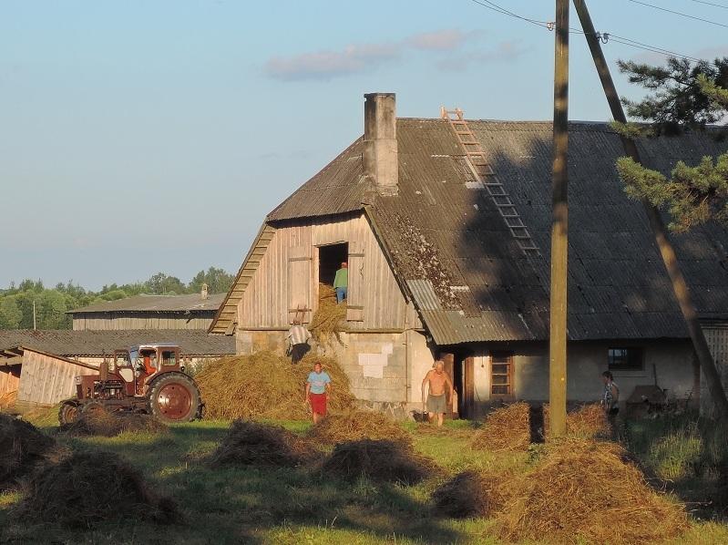 Guardando el heno en el granero para el invierno. Típica granja de estas tierras.