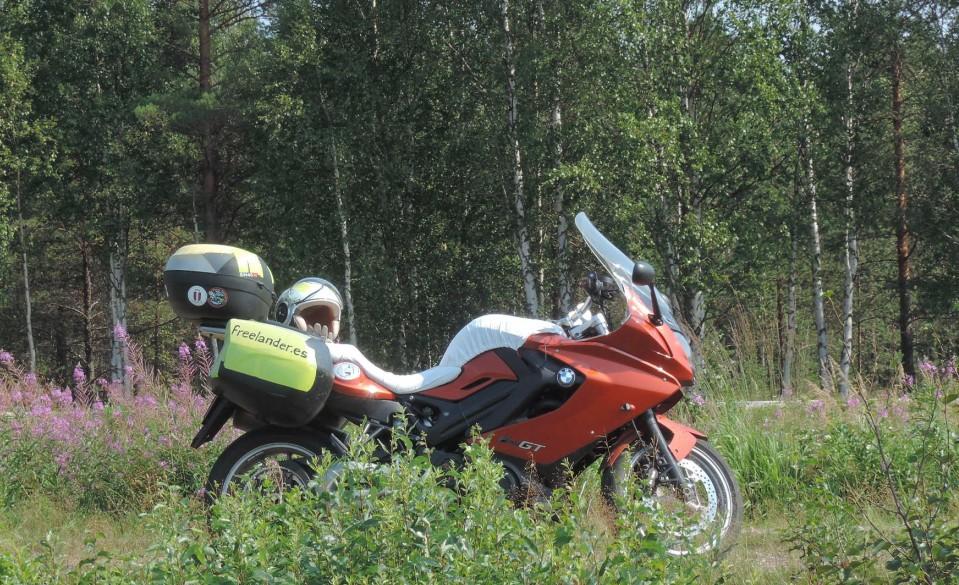 Entre los bosques de Finlandia, una nueva etapa del viaje comienza