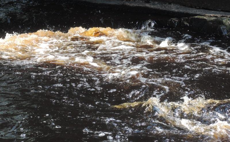 Detalle del color del agua