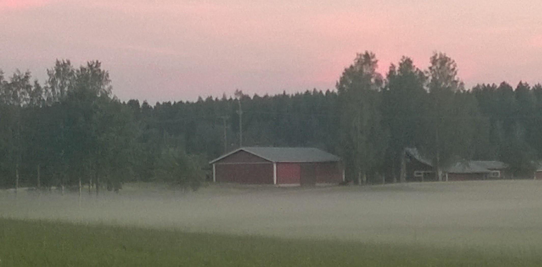 Al ocaso, una espectral niebla surge de la hierba y se traga el bajío.
