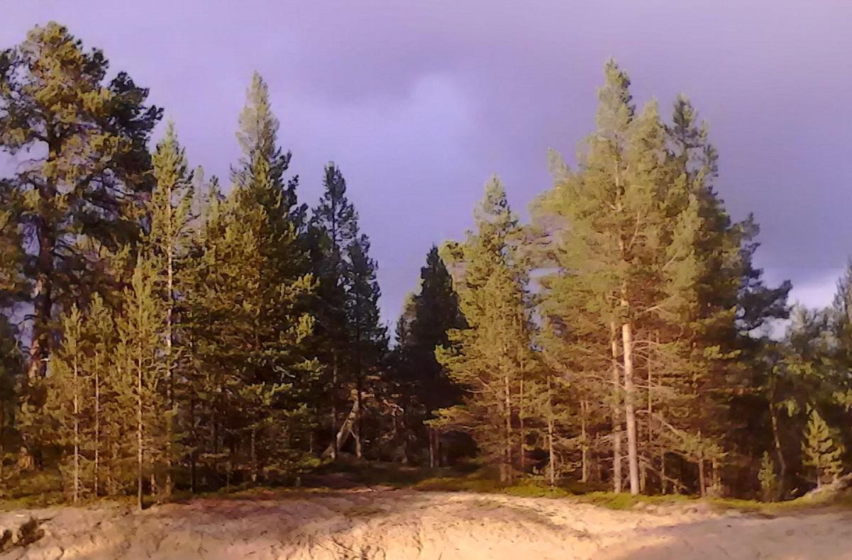 Un rayo de sol escapa de las nubes