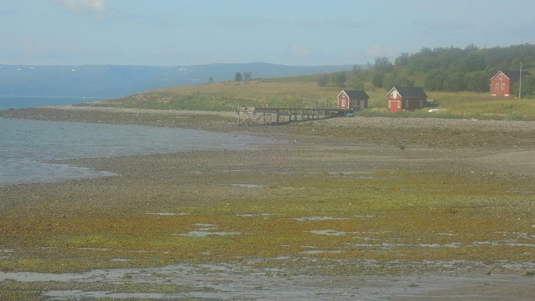 La marea baja (fiordo Lakse) deja al aire extensas áreas de playa