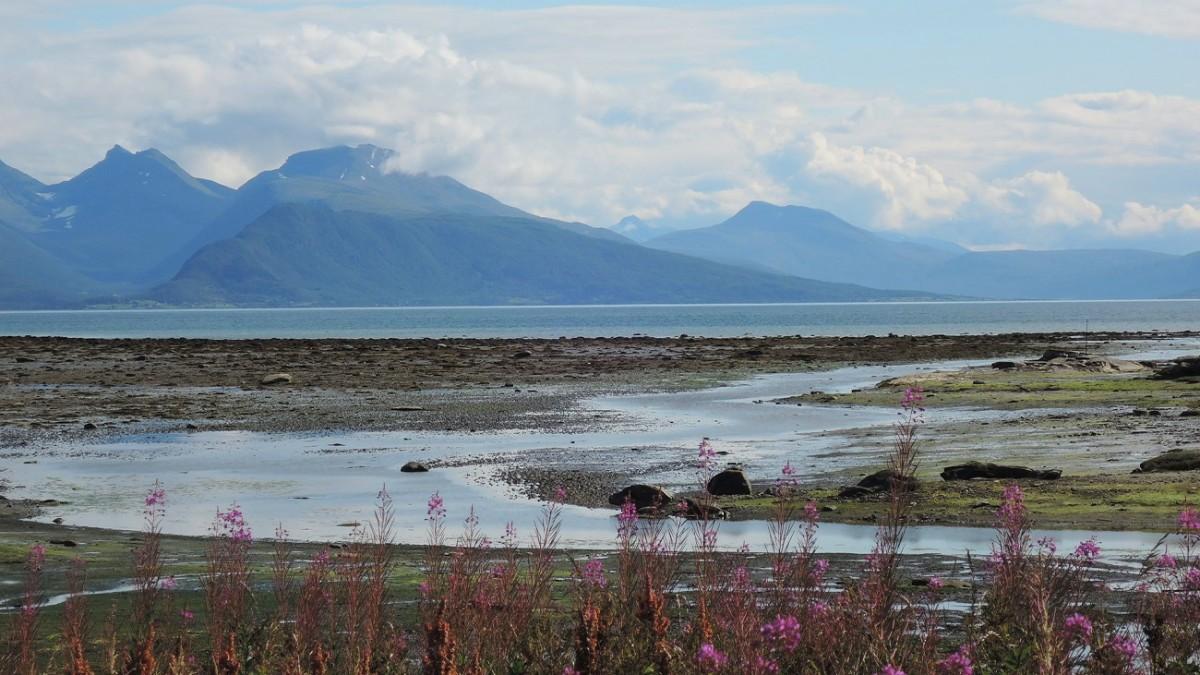 Marisma en Balsfjord, al sur de Tromso