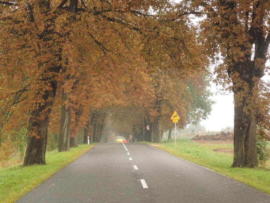 Empieza el otoño, continúa la ruta