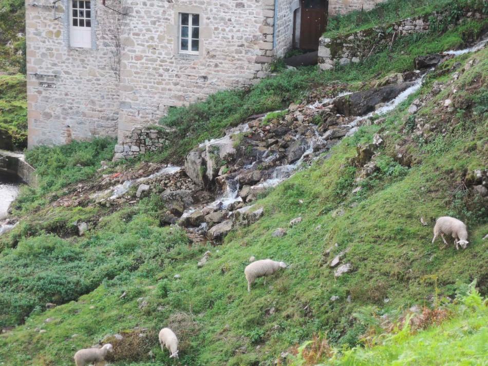 Ladera junto al molino en Peyrat-le-Château
