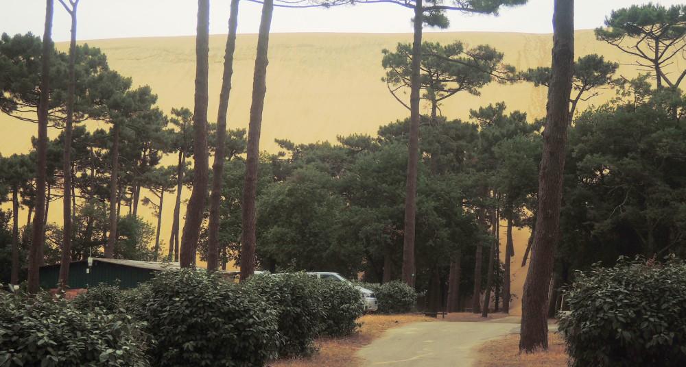 La duna del Pilat