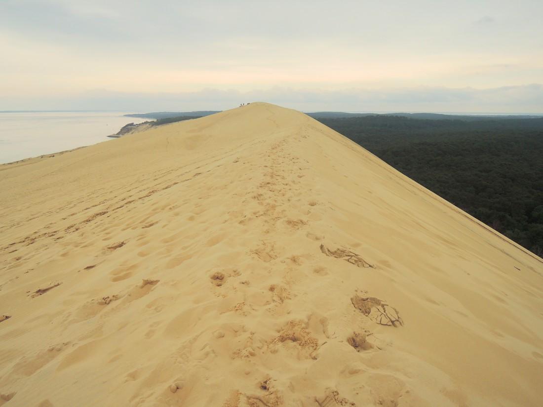 El llano litoral francés desde la duna del Pilat